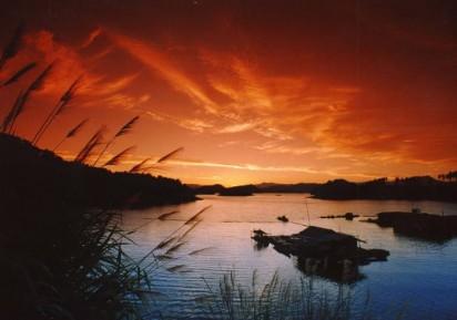 【独家入住名湖酒店】千岛湖、森林氧吧2日游