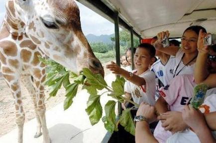动物世界杭州未来世界六和塔杭州娃哈哈下沙工业园