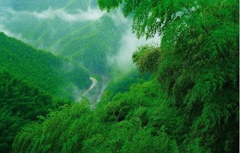 安吉高家堂、江南天池温泉、中国大竹海3日巴士跟团游(宿安吉品质农家乐,赠含2早3正农家餐)