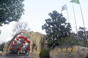 【门票立减】上海动物园成人票