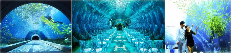 海棠湾天房洲际度假酒店 海底餐厅