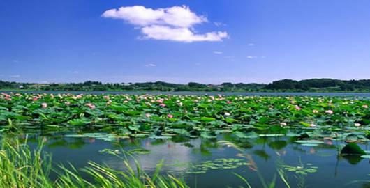 常德柳叶湖风景名胜区常德柳叶湖风景名胜区柳叶湖凭着天然的区位优高清图片