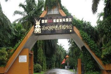 景洪西双版纳_景洪市区人口