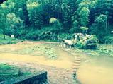开心驴行—安吉浙北大峡谷、中国大竹海、大溪峡谷皮筏漂流纯玩巴士2日游