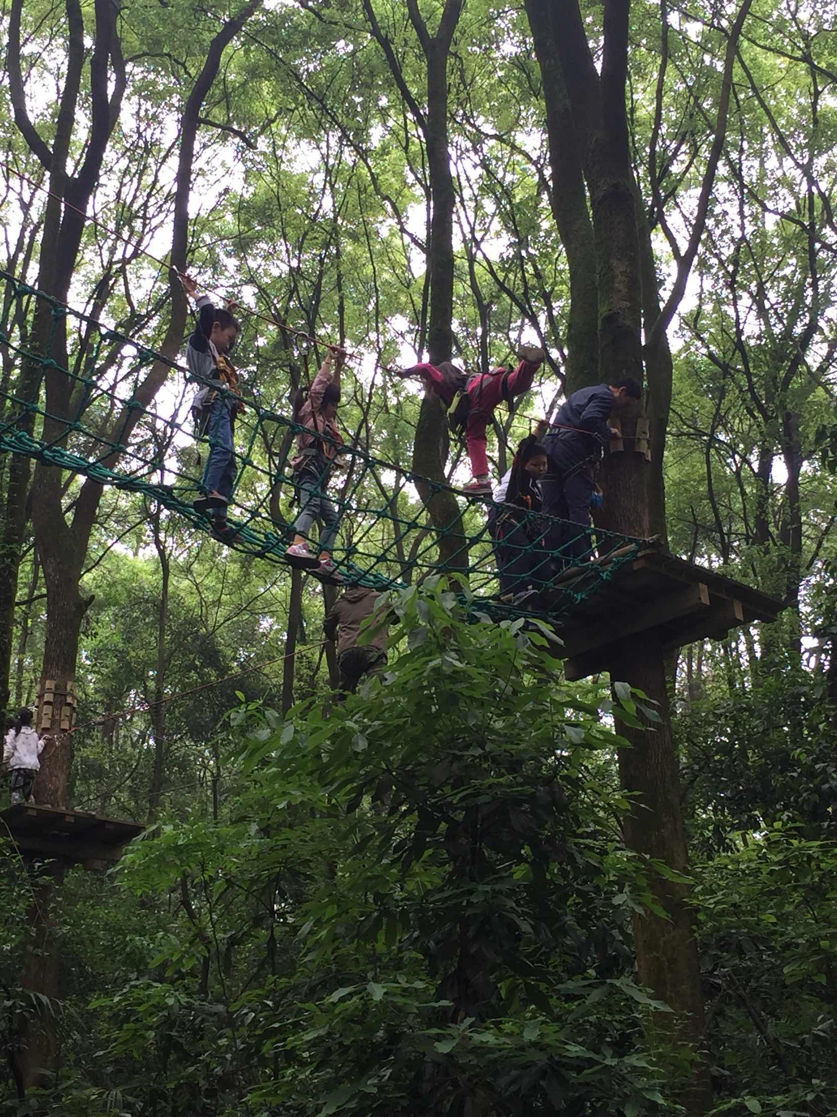重庆飞越丛林户外冒险乐园   黄线【儿童线】图片