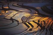【云南摄影9日游】元阳梯田、罗平油菜花、东川红土地、普者黑、抚仙湖、红嘴鸥9天深度游【跟团游特卖】