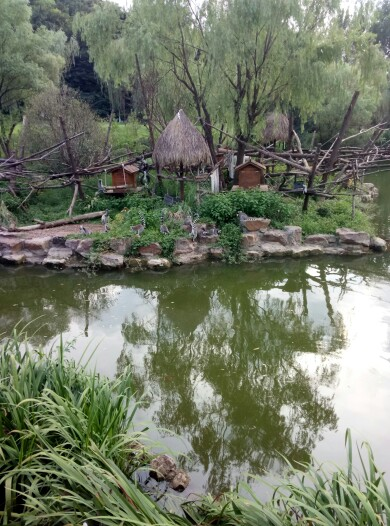 红山森林动物园   成人票 - 码上游【需现场驴妈妈工作人员指导购买图片
