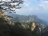 黄山、西海大峡谷纯玩巴士2日游(山顶酒店标准可选)