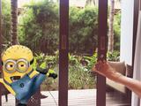 巴厘岛4晚6日游(三岛奇缘,独栋泳池别墅或国际酒店,金银蓝梦贝妮三岛出海一日游 另特赠价值500美金金银岛水上活动大礼包★★★★★)