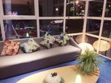 【英伦印象·管家式服务·位于泰晤士小镇内】住1晚上海菲堤酒店+双早+欢乐谷/上影视乐园/上海之根雪浪湖温泉/月湖雕塑公园(景点4选1)+欧舒丹全套卫浴+停车场&WIFI,免费游泰晤士小镇+自行车骑行!