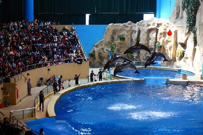 北京动物园海洋馆巴士1日当地游