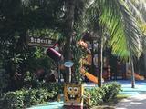 【爆款推荐】三亚双飞5日4晚自由行([亚龙湾探险寻宝记]住亚龙湾红树林度假酒店,享一线海景,私家沙滩,巴厘岛热带风情纯度假酒店,让您感受红树林不一样的热情,含接机)