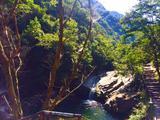 安吉浙北大峡谷、大溪峡谷漂流、大竹海巴士2日跟团游([特卖]两天一晚单人套餐, 住高品质酒店)