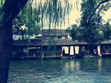 上海迪士尼乐园、苏州、乌镇、杭州5日游(嗨翻迪士尼  挚爱苏杭 绝不进店 接送一条龙  一晚宋城千古情酒店)