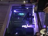 【夏游西溪】住1晚杭州西溪喜来登度假大酒店(酒店特设童趣亲子房可自选,提前一天预订有礼)+西溪湿地东区(景区门票+电瓶船票)自助双早免费+酒店设施,游泳等