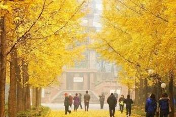 乐山、峨眉山金顶、成都港、万年寺双飞5日跟黔南特色民族美食代表性图片