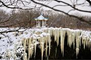 哈尔滨、雪乡、长白山、镜泊湖、雾凇双飞7日深度游([冰雪盛宴、穿越雪原]雪乡林海穿越、镜泊湖鱼宴、不限时滑雪、观四大奇观之雾凇、赏东北二人转、享长白山温泉)