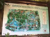 东平国家森林公园三人票