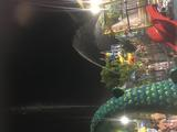 苏州 2天1晚 【清爽一夏,玩乐大阳山】住苏州大阳山商旅酒店+酒店双人早餐+大阳山森林公园文殊寺或大阳山植物园门票(二选一)2张+景点2选1:苏州乐园森林水世界或四季悦水游村+wifi&停车