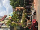 【狂欢水上乐园】住1晚上海桃城度假村+自助早餐3份+室内水上乐园门票2大1小